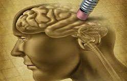 old-brain-melodymag.com